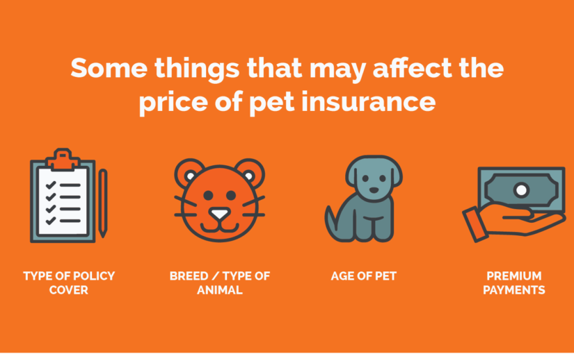 If You Have to Pay Pet Insurance, You Must!
